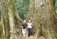 AMAZING TRANG AN - CUC PHUONG NATIONAL PARK TREKKING 2 DAYS 1 NIGHT from 78 USD/person only