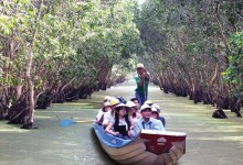 TRA SU CAJUPUT FOREST FULL DAY TOUR