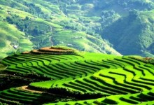 HANOI - SAPA - HANOI 2 DAYS 1 NIGHT from 89 USD per person only
