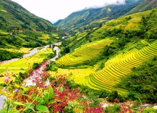 HANOI - HALONG - SAPA 6 DAYS 5 NIGHTS from 371 USD/person only