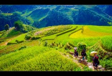 VIETNAM GRAND TOUR 21 DAYS 20 NIGHTS from 1120 USD/person only