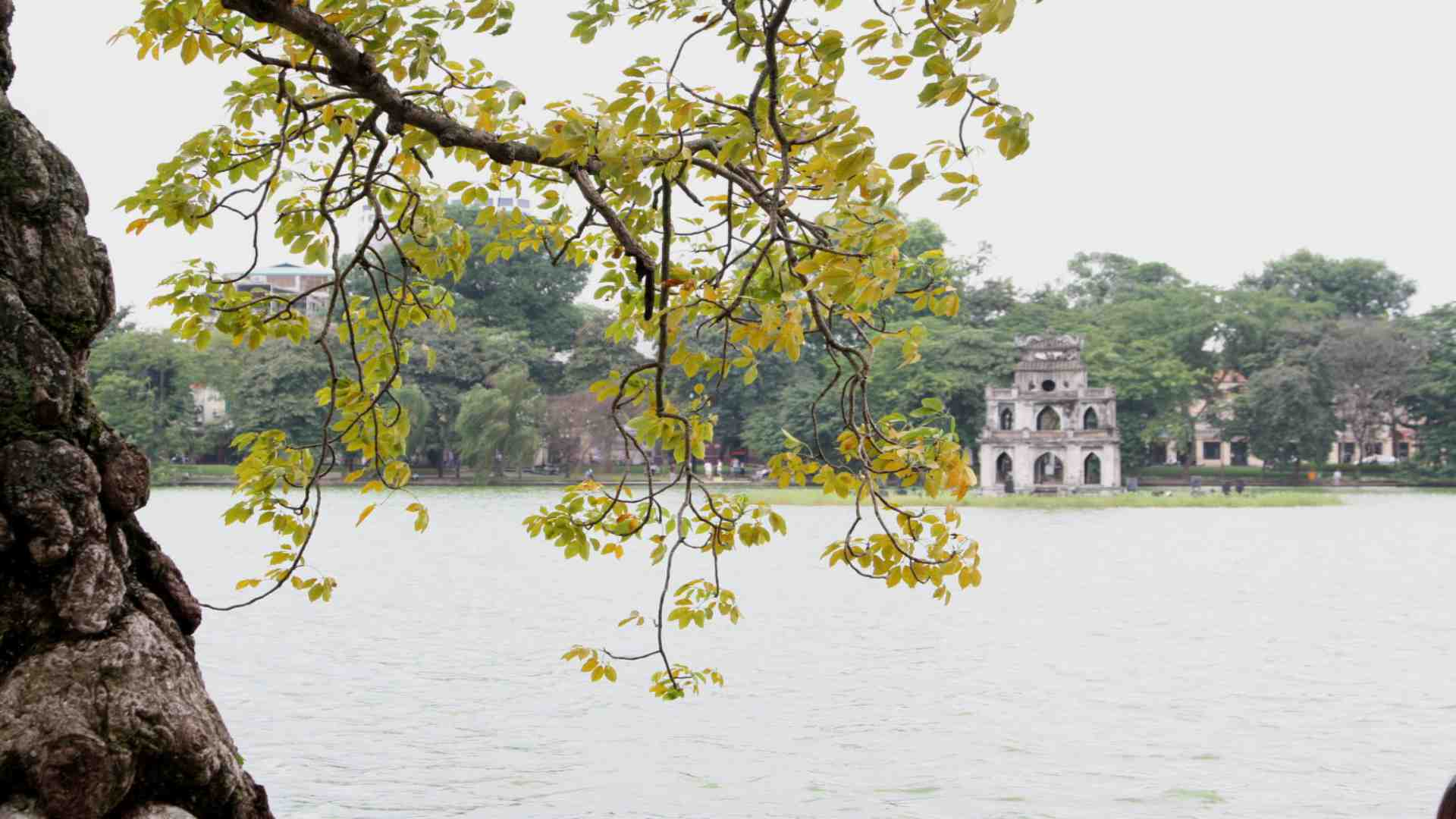 HANOI - HALONG - SAPA - NINHBINH - HANOI 7 DAYS 6 NIGHTS - BUDGET TOUR