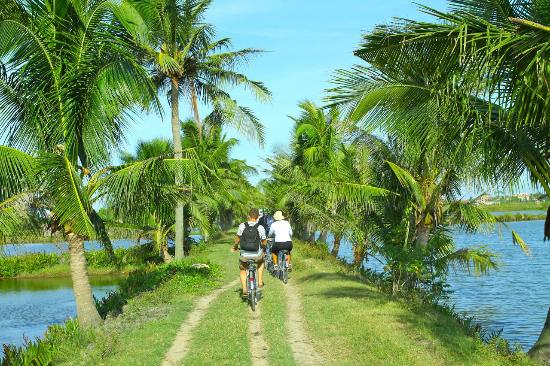 FULL DAY BIKE RIDE AROUND HOI AN
